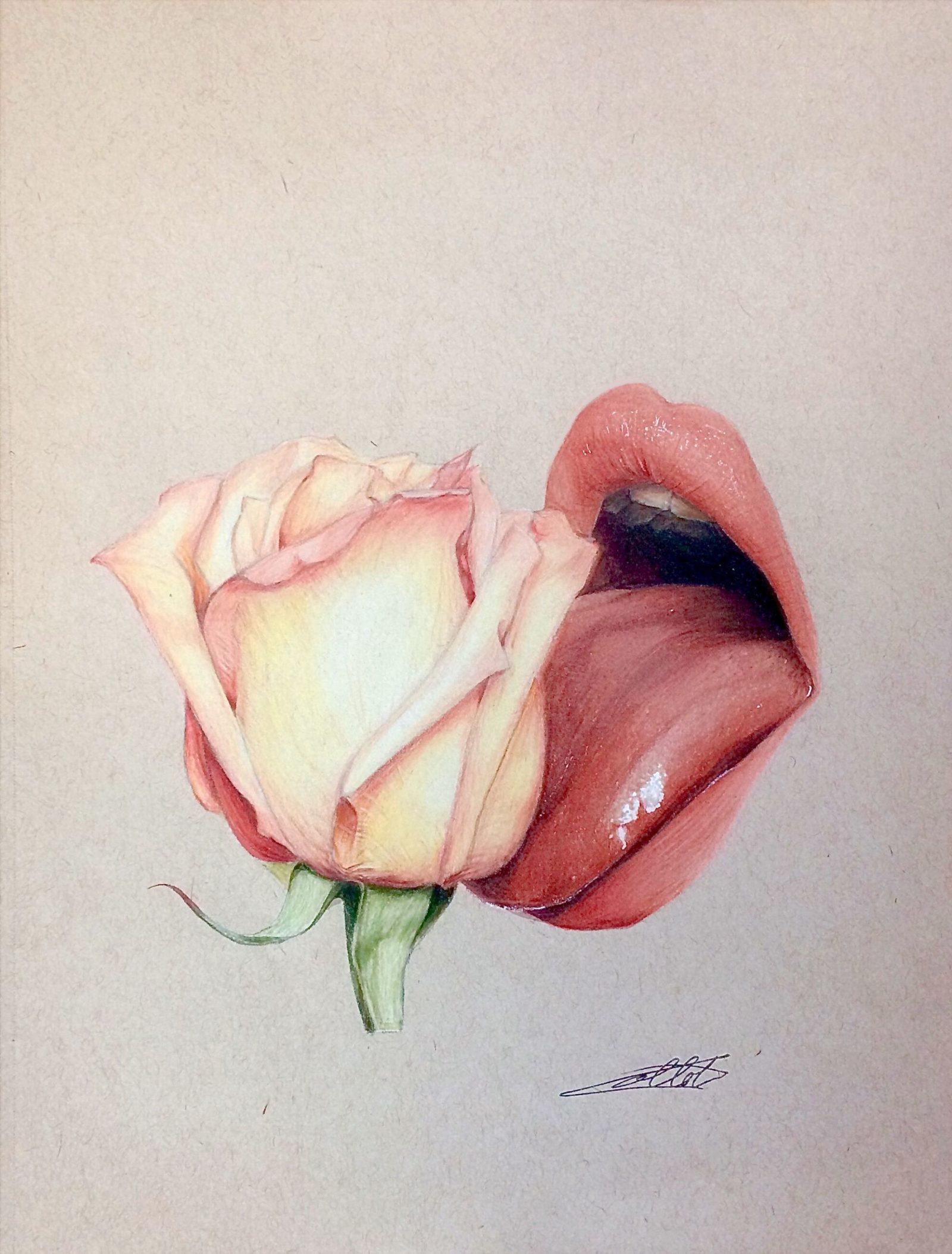 COLLOT Grégoire - The Lick